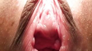 Pussy asiatica aperta